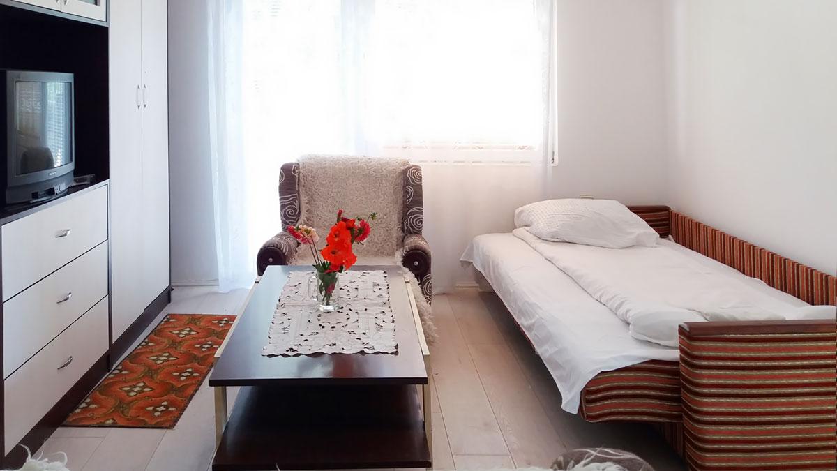 Apartman Aronija - Dnevna soba - Kauč na rasklapanje