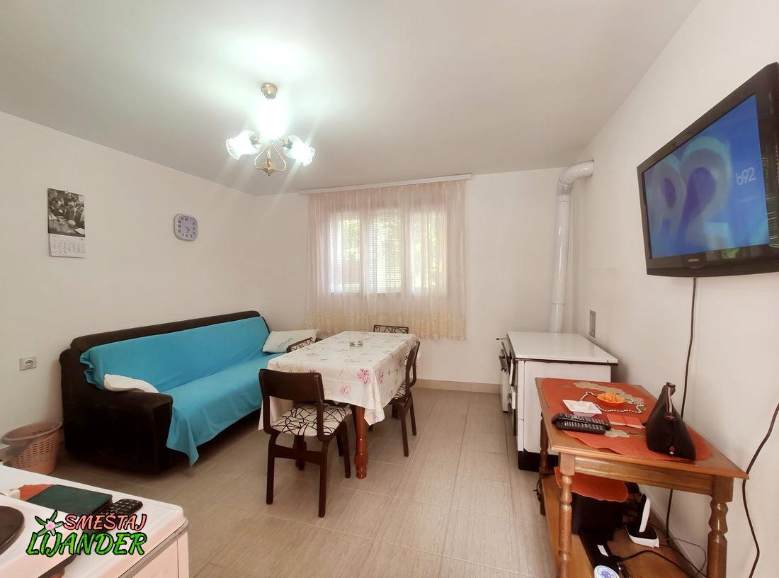 Apartman Lijander - Letnja kuhinja: TV