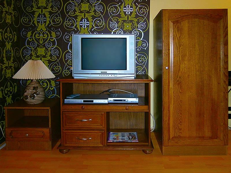 Apartman Staša - Dnevna soba - TV - DVD