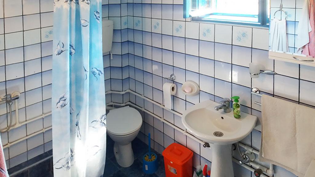 Apartman Topola - Kupatilo i tuš kada
