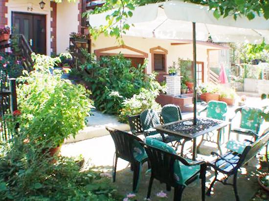 Apartmani Dr Videnović - Dvorište