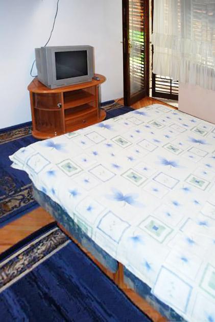 Apartman dr Gaša A3 - TV