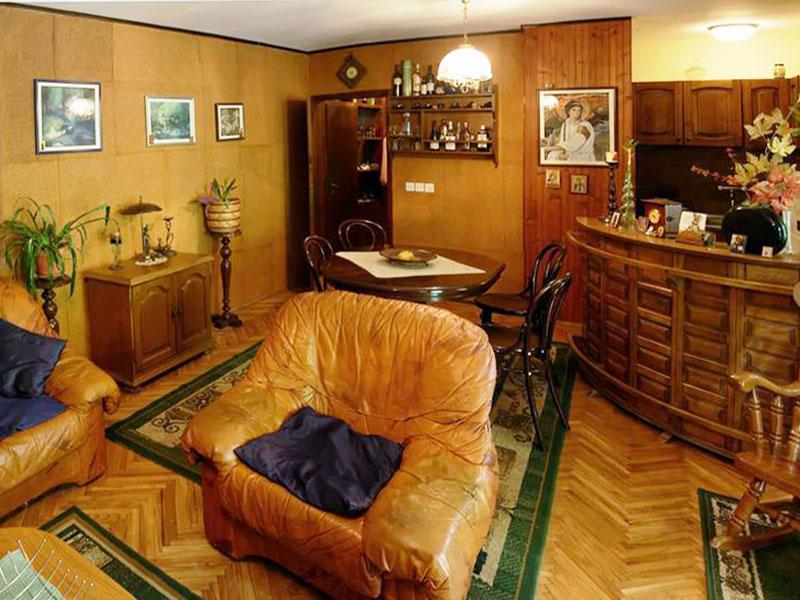 Apartman dr Gaša A1 - Dnevna soba