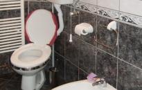 Apartman Jeca - Toalet