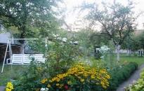 Sobe Pčela - Dvorište