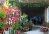 Apartman Cvetni vrt Sandra Sokobanja